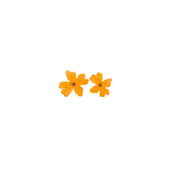 flores-naturales-secas-large-flower-naranja-1-by-Fantasy-Nails