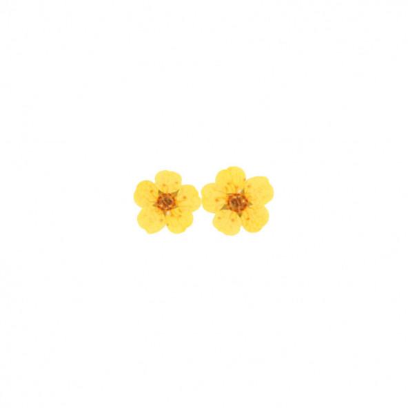 flores-naturales-secas-big-flower-amarillo-1-by-Fantasy-Nails