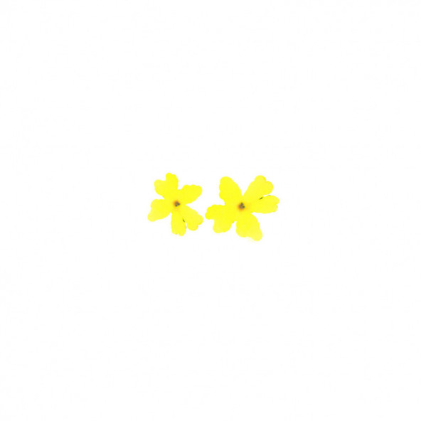 flores-naturales-secas-large-flower-amarillo-1-by-Fantasy-Nails
