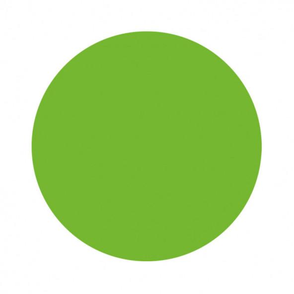 pintura-acrilica-fantasy-verde-claro-1-by-Fantasy-Nails