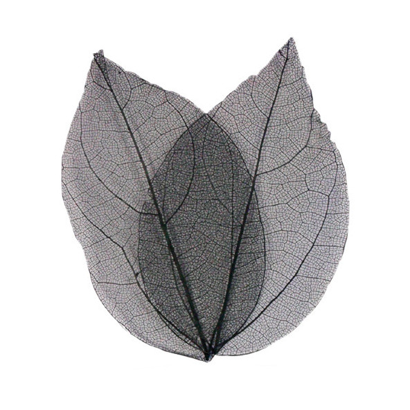 hojas-negro-1-by-Fantasy-Nails